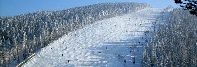 Ski-staza1